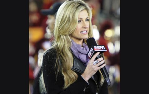 Erin Andrews: True fighter
