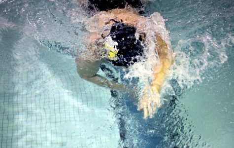 Swim And Dive Meet Vs. Wakeland High School