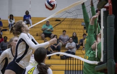 Varsity Volleyball Ends Season As Area Champions