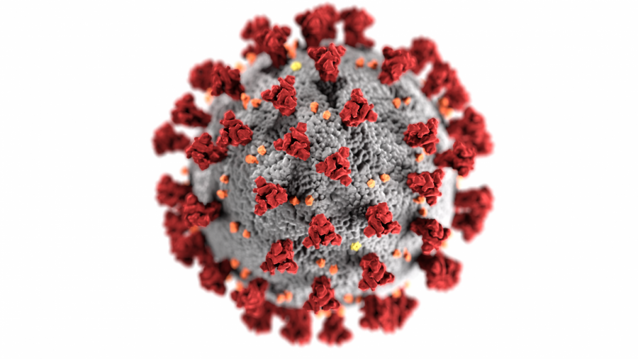 This illustration by the CDC shows the structure of a coronavirus.