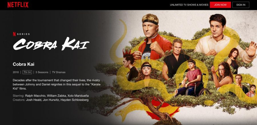 "Netflix released and produced the hit new season of, ""Cobra Kai,"" on January 1st, 2021. The show has a total of three seasons."
