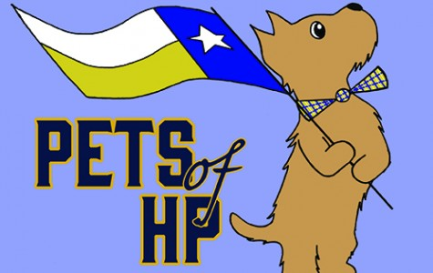 Pets of HP