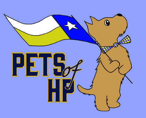 Pets of HP
