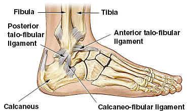 Gordon Haywards Ankle Injury