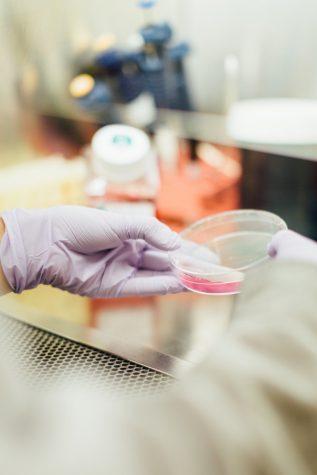 Trump To Increase Swab Production Amid Shortage Of Coronavirus Tests